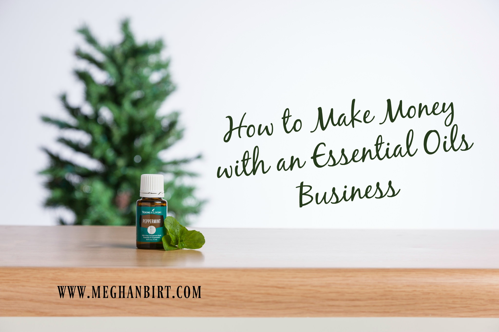 how-to-make-money-with-an-essential-oils-business-graphic